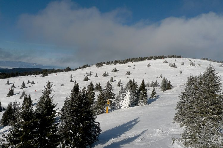 Kopaonik ski slopes seen from chairlift