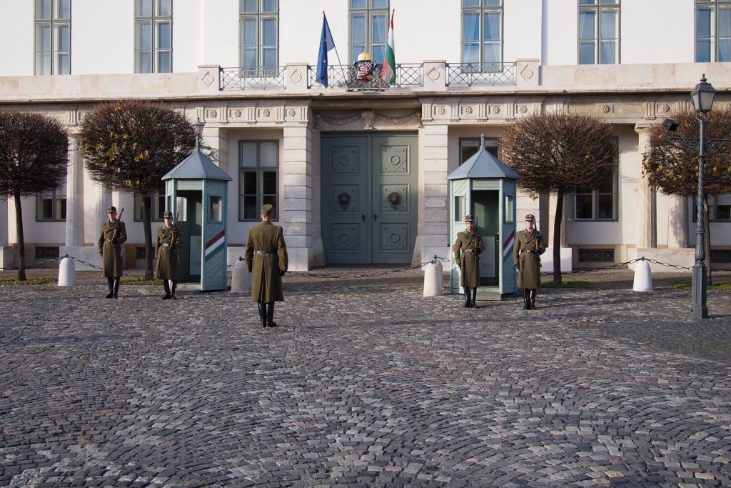 Guards changing in the Buda castle